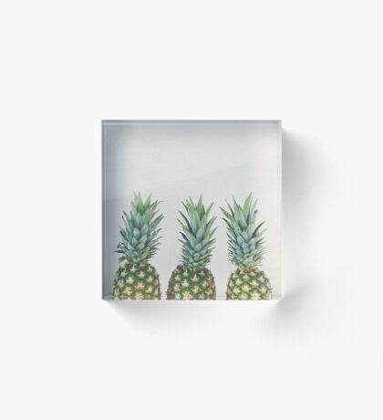 Pineapple Trio Acrylic Block