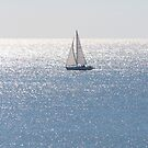 Sailin on Sunshine by Bob Hardy