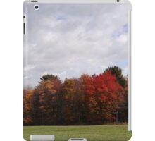 Bright and Beautiful iPad Case/Skin