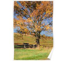 Enjoying The Autumn Shade Poster