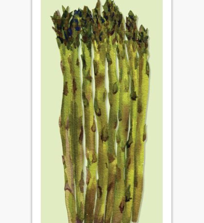 Asparagus Watercolor Painting Sticker