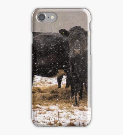Hay it's snowing ! iPhone Case/Skin