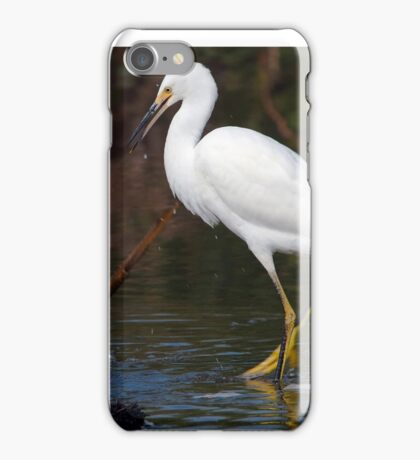 Snowy Egret (Egretta thula) iPhone Case/Skin