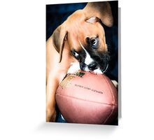 Boxer Breed  Baby  Greeting Card