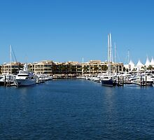 Mariner's Cove Marina by Wayne  Nixon  (W E NIXON PHOTOGRAPHY)