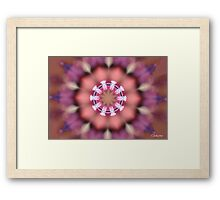 DREAM-CATCHER  Framed Print