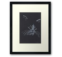 The Mischievous Kitten  Framed Print