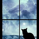 All The Wonder Of A December Evening by Stephanie Rachel Seely