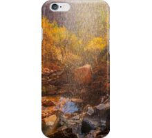Trail to Emerald Pools iPhone Case/Skin