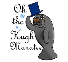Oh the hugh manatee Photographic Print