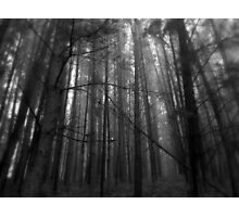 The Woodcutter's Nightmare Photographic Print