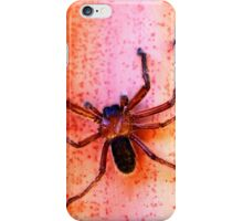 Huntsman on a hot tin roof iPhone Case/Skin