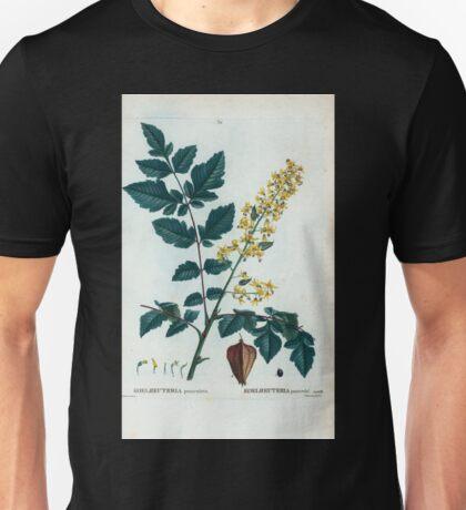 Traité des Arbres et Arbustes 0234 Koelreuteria paniculata Koelreuteria paniculé Unisex T-Shirt