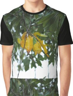 First Signs of Autumn Graphic T-Shirt