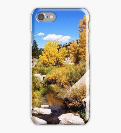 picture book fall iPhone Case/Skin
