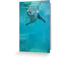 Penguin Underwater Greeting Card