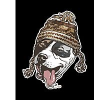 Chillin  Pit Bull Wearing Winter Beanie copy Photographic Print
