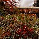 Autumn Livingston Manor Covered Bridge by PineSinger