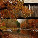 Autumn Beaverkill Covered Bridge by PineSinger