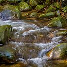 Water over Stones by Bette Devine