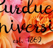 Purdue Rose Sticker