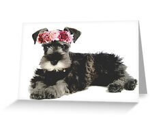 Miniature Schnauzer Flower Crown Greeting Card