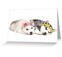 Husky Puppies Flower Crown Sleeping Greeting Card
