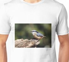 A singing Nuthatch Unisex T-Shirt