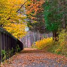 Autumn Walkway by KathleenRinker