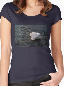 Icy Island - Drifting Solo on Silky Grays Women's Fitted Scoop T-Shirt