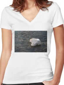 Icy Island - Drifting Solo on Silky Grays Women's Fitted V-Neck T-Shirt