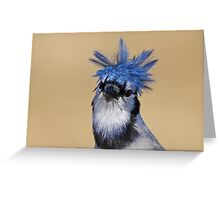 Is that you Don King? - Blue Jay Greeting Card