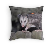 Opossum (Didelphimorphia ) Throw Pillow
