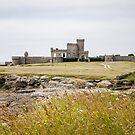 Pointe de Trévignon  Brittany by DebbyScott