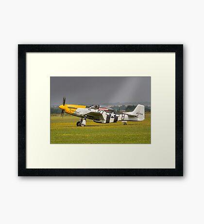 Mustang, Buttercups, Sunshine and Shower Framed Print