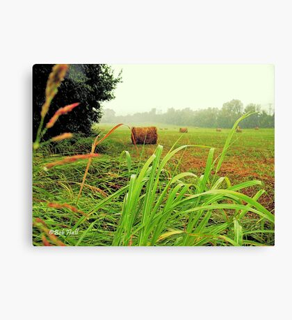 """Tall Grass and Hay Bales""... prints and products Canvas Print"