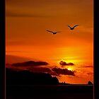 SUNSET SEEKERS by RoseMarie747