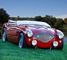 1956 Austin Healey 100M Roadster by DaveKoontz