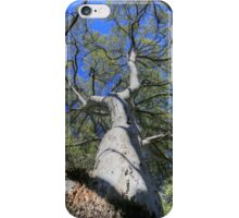 Tree Crown iPhone Case/Skin