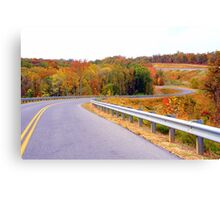 The Roads of Autumn Canvas Print
