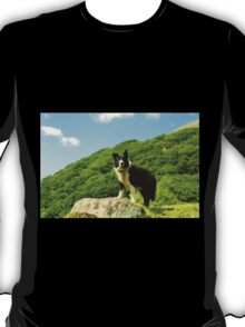 The Majesty of Indy T-Shirt