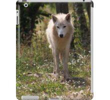 Hudson Bay Wolf iPad Case/Skin