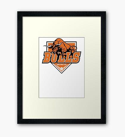 District 10 Bulls Framed Print