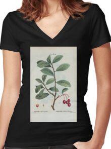 Traité des Arbres et Arbustes 0283 Mespilus prunifolia Neflier à feuil de prunier Plumleaf crab apple Women's Fitted V-Neck T-Shirt
