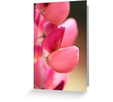 Lupine named Gallery Red Greeting Card
