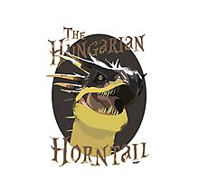 The Hungarian Horntail- Harry Potter Photographic Print