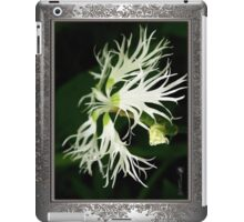 Dianthus Superbus - White iPad Case/Skin