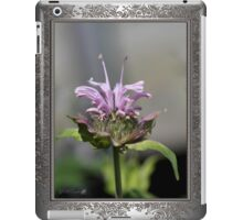 Bee Balm named Panorama Lavender iPad Case/Skin