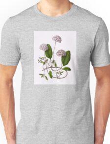 Abronia Umbellata Unisex T-Shirt
