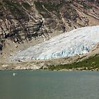 Nigardsbreen glacier by Dominika Aniola